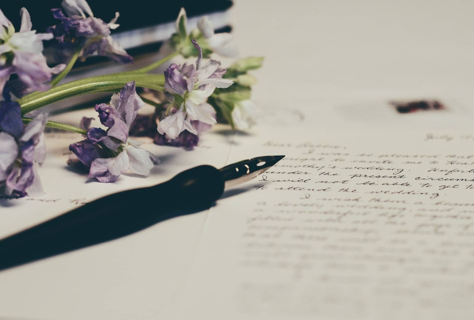 Image stylo plume